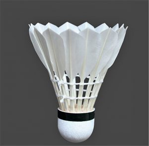 badminton-ball (2)
